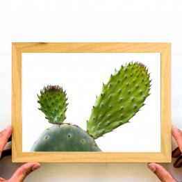Cactus, Downloadable Print, Printable Wall Art, Home Decoration, Large Poster, Painting