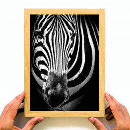 Zebra Black & White, Printable Wall Art, Instant Download, Home Decoration, Painting