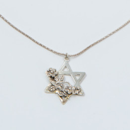 Star of David Decorated with silver flowers