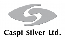 Caspi Silver ltd